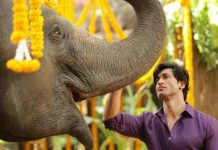 Junglee Full Movie Download
