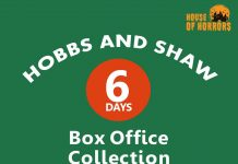 Hobbs and Shaw 6th Day Collection