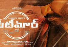 Seetimaarr movie details